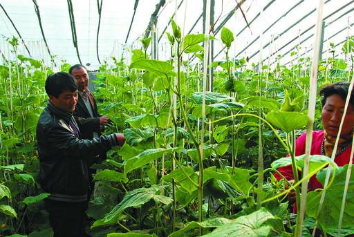 浚县段包括已列入《鹤壁市大运河遗产规划》的11处遗产点,即卫河浚县