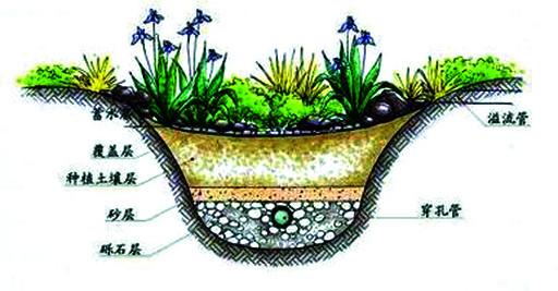 植物剪贴画海绵画
